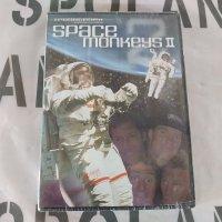 DVD カイトボード【SPACE MONKEYS �】 新品正規品 半額SALE(メール便)