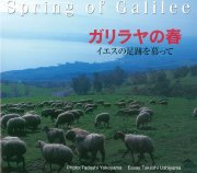 【送料無料】ガリラヤの春 〜イエスの足跡を慕って〜の商品画像