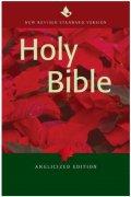 【SPECIAL PRICE】【20%OFF】英語 聖書 NRSV  NR530:Tの商品画像