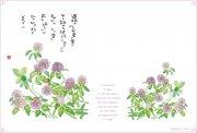 【Olives掲載/取り寄せ】<br>星野富弘 ランチョンマット(アカツメクサ)<br> HT17-G(53910)の商品画像
