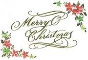 S180-016 クリスマスミニカードの商品画像