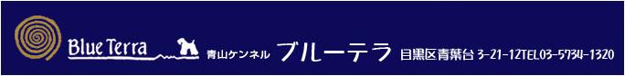 犬の専門店 青山ケンネル・ブールーテラの NET SHOP 通販