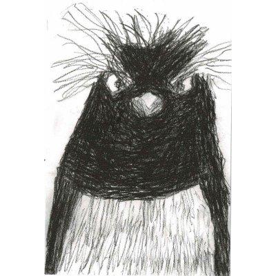 ポストカード<br>「マカロニペンギン」