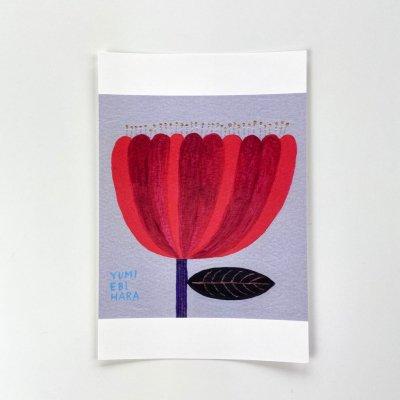 海老原 由美・A flower in the dream(red)【ポストカード】<img class='new_mark_img2' src='https://img.shop-pro.jp/img/new/icons11.gif' style='border:none;display:inline;margin:0px;padding:0px;width:auto;' />