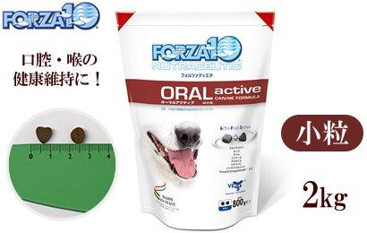 FORZA10  オーラルアクティブ(口腔ケア)2kg