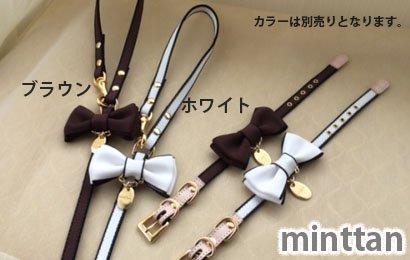 minttan サイドラインリボン シックカラー/リード