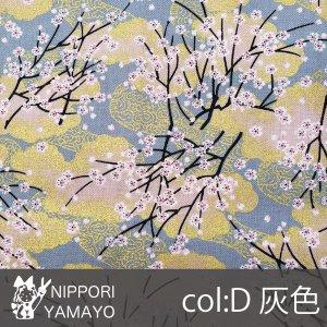 和調シーチングプリント45000【#68 桜柄】68-D 生地巾:110cm