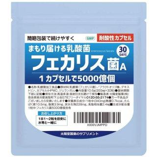 フェカリス乳酸菌カプセル