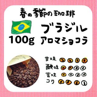 100g/季節限定 ブラジルアロマショコラ<img class='new_mark_img2' src='https://img.shop-pro.jp/img/new/icons13.gif' style='border:none;display:inline;margin:0px;padding:0px;width:auto;' />