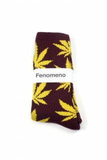 【Fenomeno -フェノメノ-】<br>  Socks PPL