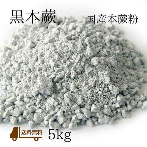 黒本蕨5kg