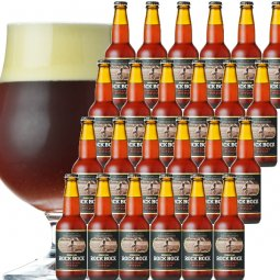 長期熟成ストロングビール「プレミア ム ロック・ボック」24本セット
