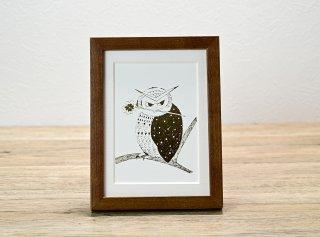 江越ミカ「四葉のクローバーをくわえたフクロウ」