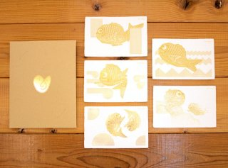 「めで鯛(Yuji Nagai)|5種セット」
