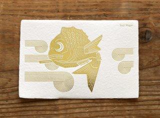 「めで鯛(Yuji Nagai)|C柄」