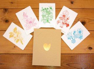「花と言葉(Ryosuke Aruse)|5種セット」