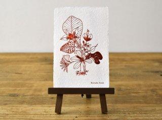 「花と言葉 │ Vicky Baum(Ryosuke Aruse)」