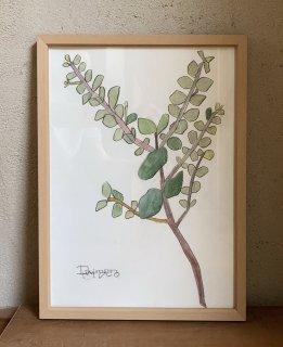 「草と本に飾ったユーカリ(ダイモンナオ)」