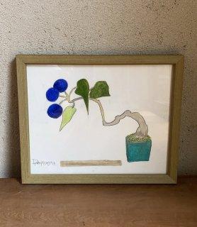 「アオツヅラフジ+青緑小鉢 (ダイモンナオ)」