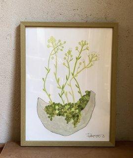 「多肉植物の花+シルバー丸鉢(ダイモンナオ)」
