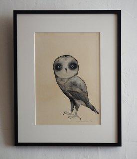 「Owl �(ミヤギユカリ)」
