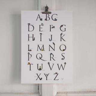ANY Learn ABC poster