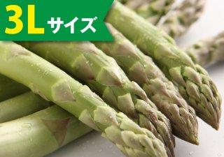 【5月発売】ハウスアスパラ 1kg(3Lサイズ)【冷蔵】