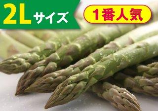 【5月発売】ハウスアスパラ 1kg(2Lサイズ)【冷蔵】
