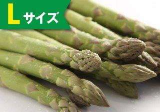 【5月発売】ハウスアスパラ 1kg(Lサイズ)【冷蔵】