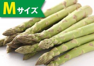 【5月発売】ハウスアスパラ 1kg(Mサイズ)【冷蔵】