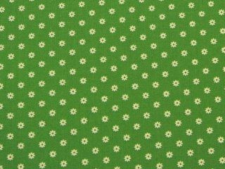 HOP, SKIP AND A JUMP! / DITSY DAISY / GRASS   by Moda Fabrics