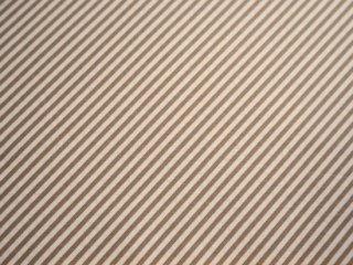 OLIVE'S FLOWER MARKET / SKINNY BIAS / TAUPE  by Moda Fabrics