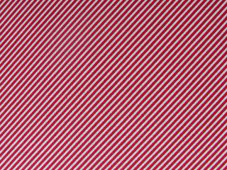 SCRUMPTIOUS/BIAS STRIPE/RED