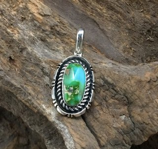 Navajo Fred Peters Sonoran Gold Turquoise Pendant