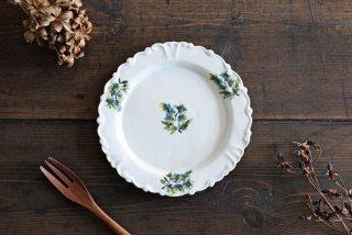 松本郁美|白磁掻き落とし 6.5寸リム装飾皿(オンシジューム)