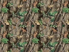 RealTree OriginalD Cotton 生地<img class='new_mark_img2' src='https://img.shop-pro.jp/img/new/icons34.gif' style='border:none;display:inline;margin:0px;padding:0px;width:auto;' />