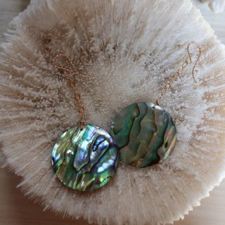 abalone venus  Pierce -s-
