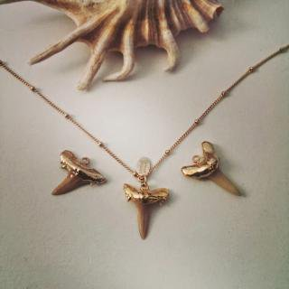 ★Shark tooth necklace