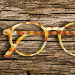 SEE CONCEPT YELLOW TORTOISE