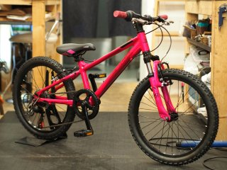 HARO 2017 FLIGHTLINE20 PINK