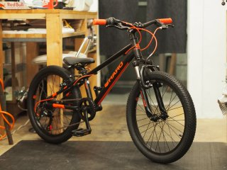HARO 2019 FLIGHTLINE20 BLACK