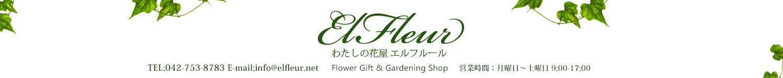 相模原市・町田市 バラ 花束 花ギフト専門店 エルフルール