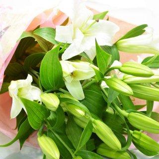 ボリューム満点 オリエンタルユリの花束 5本 20輪以上 カラー:ホワイト