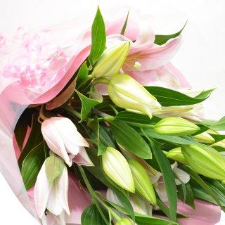 ボリューム満点 オリエンタルユリの花束 5本 20輪以上 カラー:ピンク