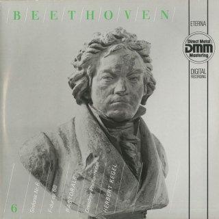 ベートーヴェン:交響曲6番Op.68「田園 」