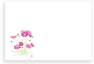 秋桜(こすもす)