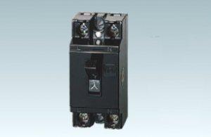 パナソニック BS2022H 安全ブレーカHB型(高遮断容量)2P2E 20A