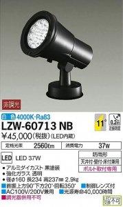 大光電機 LZW-60713NB LEDアウトドアハイパワースポットライト 非調光 白色 4000K 狭角形 黒塗装
