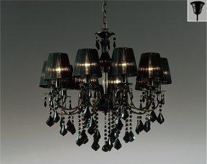 遠藤照明 ERC2024BB+S165Bx2 セット品 LEDシャンデリア LEDランプ別売り 黒