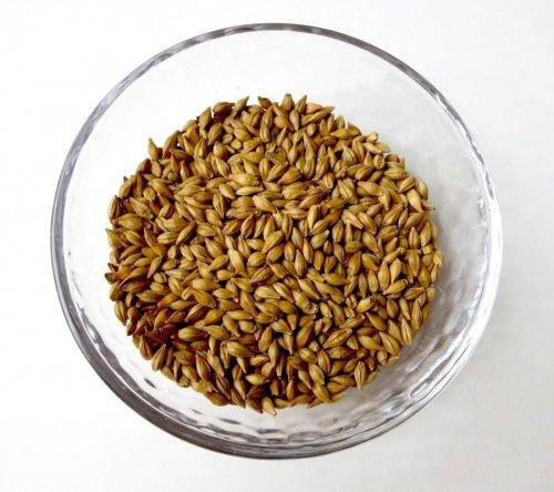 麦のお茶 バラ詰めタイプ(450g入り)